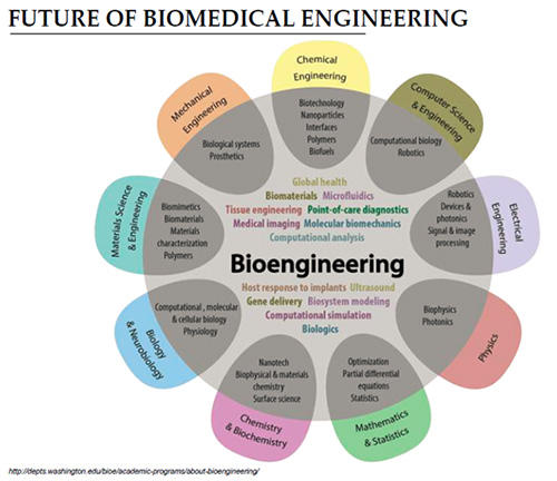 why study biomedical engineering  below are some of the skills that are needed when pursuing a degree in bioengineering