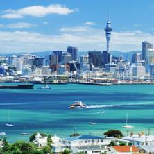 Стоимость обучения в Новой Зеландии